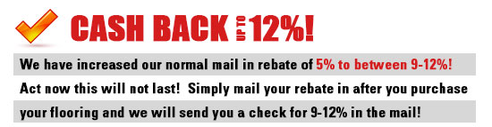 Up to 12% Cash Back